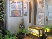 Pele, Kamapua'a, and Surfboards