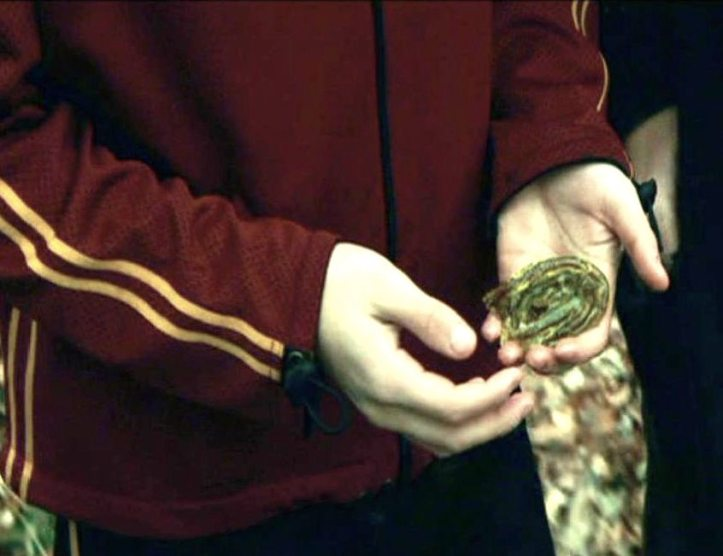 Harry holding gillyweed before he swallows it in the Triwizard tournament.