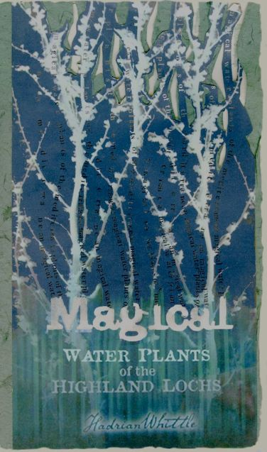 Magical Water Plants