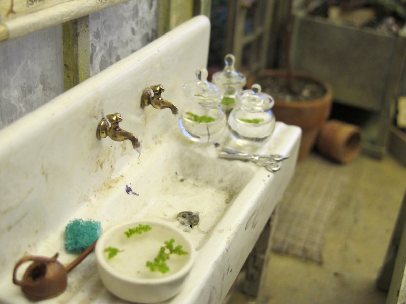A very dirty sink, with tiny ferns growing in the jars.