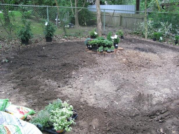 Rototilling new garden
