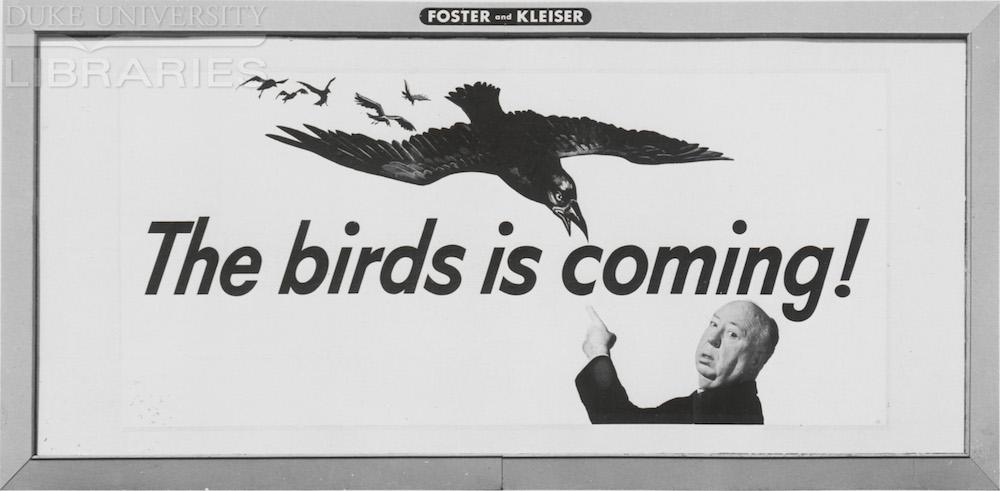 BirdsBillboard