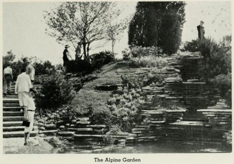 1933 Alpine Garden